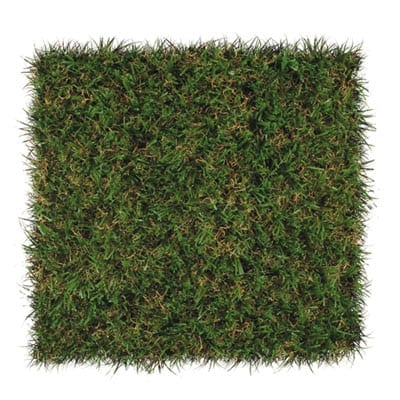 DuPont ForeverLawn Select EL Synthetic Grass